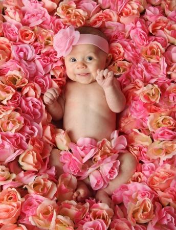 cintillos: Adorable ni�a sonriente, situada en un lecho de Rosas Rosa