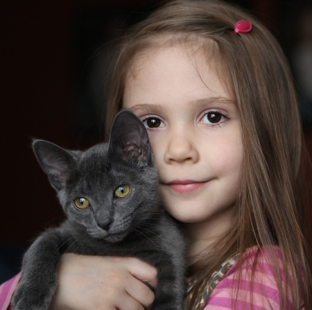 Sweet portrait of a cute little girl holding and snuggling a gray kitten