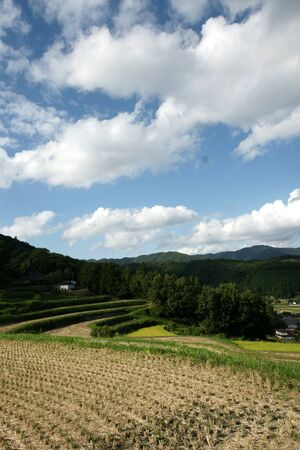 Rice terraces at Nagatani Osaka 写真素材