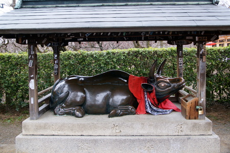 Cow statue of Kitano Tenmangu shrine