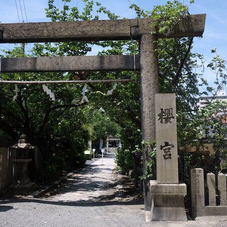 Sakura-no-miya shrine