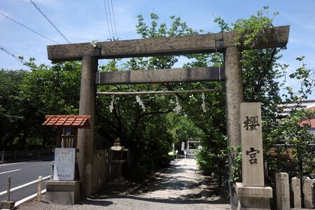 at the Sakura-no-miya shrine