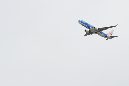 Japan Airlines 写真素材 - 135669136