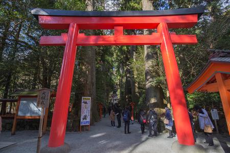 tunnel portals: torii in japanese Editorial