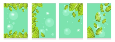 Set of Realistic Illustration Fresh Mint Leaves on Green Background. 3d Vector image with Mint Leaves Flying in Sunshine and Bubbles. Cooling Effect Mint Products. Advertising Banner or Brochure Çizim