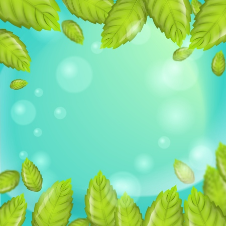 3d Vector image Mint Leaves Falling in Sunshine. Fresh Mint Leaves with Cooling Formula for Sparkling Shining White Healthy Clean Teeth on Green Background. Advertising Place in any variations