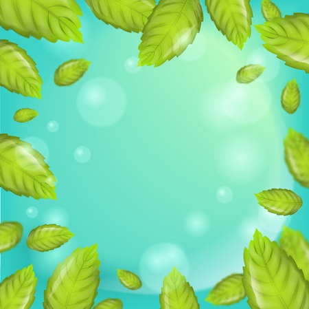 Realistic Illustration Mint Leaves on Green Background. 3d Vector image with Frame Fresh Mint Leaves. Using Fragrant Plant in different directions. Advertising place in any variations