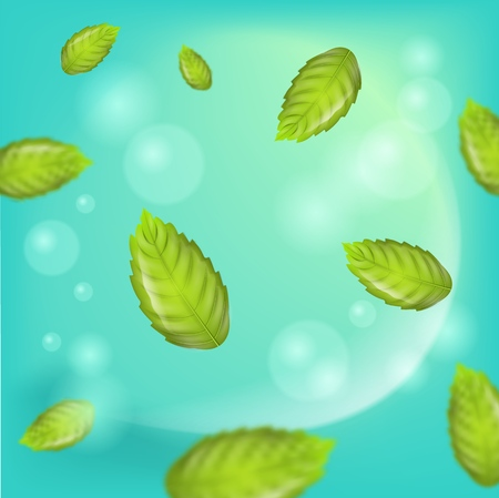Fresh Mint Leaves on Green Background. 3d Vector image Flying Mint Leaves. Mint main Ingredient Oral Hygiene and Cosmetic Products, Tea and Refreshing Drinks. Place Advertising in different variations