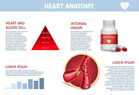 Realistic Banner of Heart and Vessel Anatomy, Diet, Drugs and Surgery Therapy Methods Educational Poster. Scientific Information in Healthcare Concept. Vector Illustration of Blood Flow and Diagram Illustration