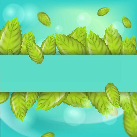 Realistic Illustration Fresh Mint Leaves on Green Background. Horizontal Arrangement Mint Leaves on Banner or Brochure Advertising purposes. 3d Vector image Mint Leaves in sunshine Ilustracja