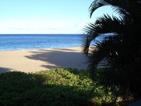 하와이 해변