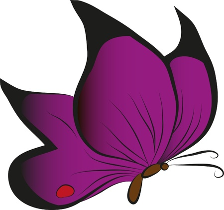Violet butterfly Vector