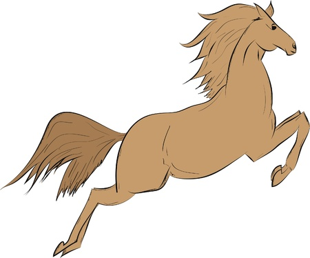brown horse: Funny brown horse