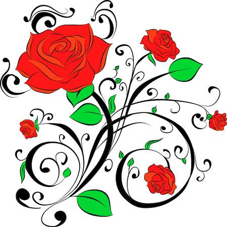 thorn: Rose