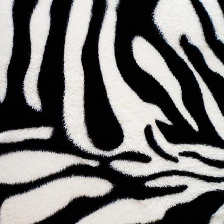 zebra: Textura de fondo de cebra Foto de archivo