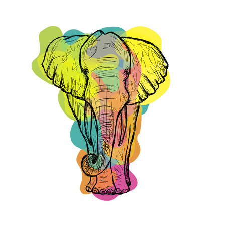 Greeting Beautiful card with Indian Elephant. Frame of animal made in vector. Perfect cards, or for any other kind of design, birthday and other holiday. hand drawn map with Elephant. Holi background.