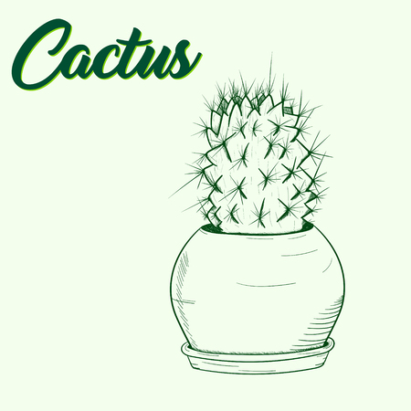 Background with a green cactus in a pot drawn by hand Vector illustration. Çizim