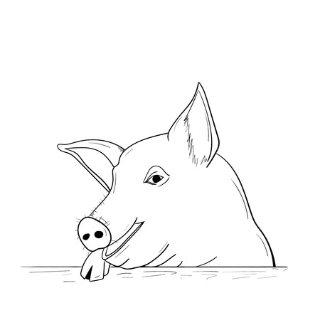 Chinese New Year Pig 2019. A pig sketch