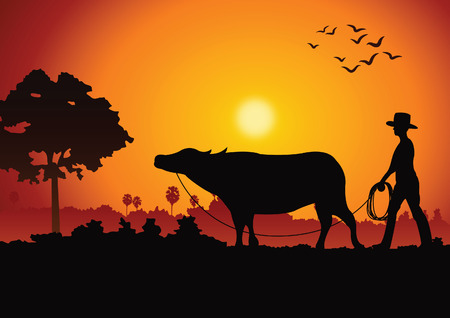sunset landscape and country life with a man lead buffalo around with tree.countryside of east lifestyle.vector illustration