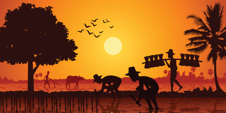 country life of Asia farmer plant rice while a man carry rice seedling and another plow field by buffalo on sunrise time,silhouette style,vector illustration