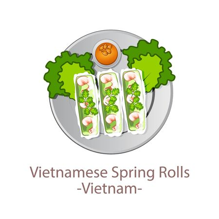 top view of popular food of national, Vietnamese Spring Rolls, in cartoon vector design
