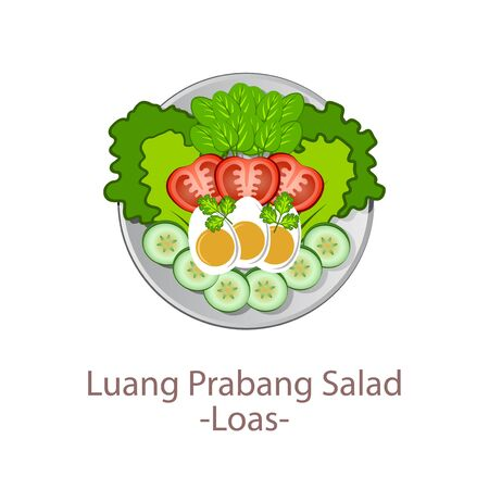 top view of popular food of national, Luang Prabang Salad,in cartoon vector design Ilustrace