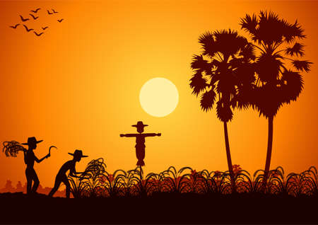 country life of Asia man harvest rice on sunrise time,silhouette style,vector illustration
