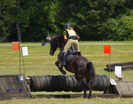 steeplechase: horse and rider taking jump at local steeplechase Stock Photo