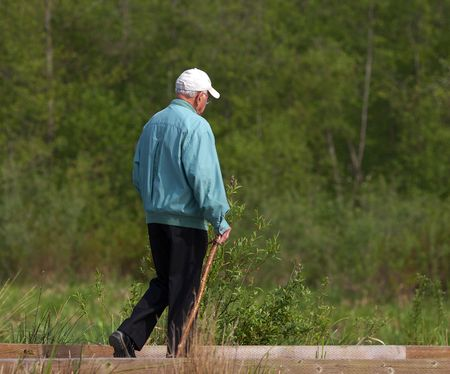 guy with walking stick: senior citizen taking a walk