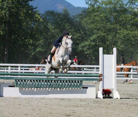 ローカル ショーの跳躍の競争で馬およびライダーを取るジャンプします。