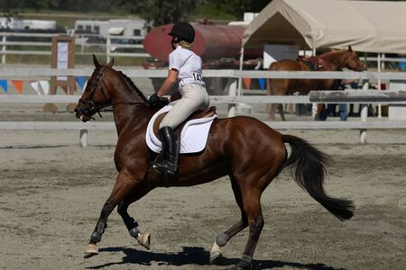 horse and rider ready to compete