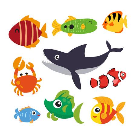 marine life vector collection design, ocean animals vector design