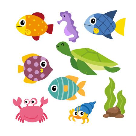 marine life vector collection design, sea animals vector design