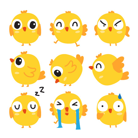chick vector collection design, chick character vector design