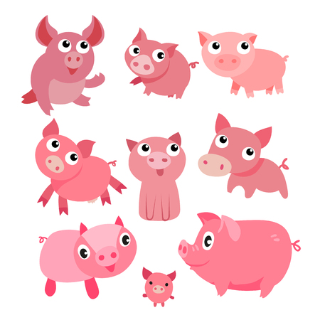 pig character vector design, pig vector collection design