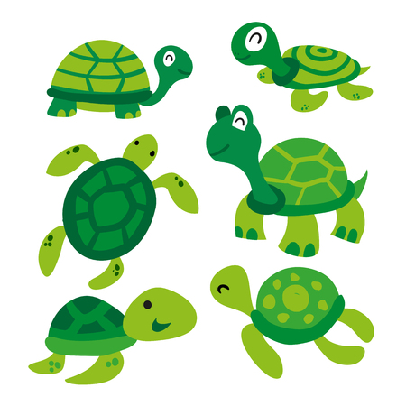 turtle vector collection design, tortoise vector collection design