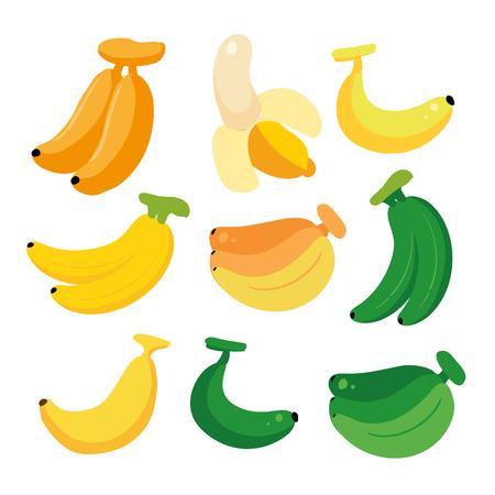banana vector collection design, fruit vector collection design