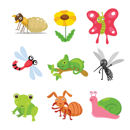 insects character design