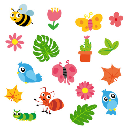insect vector collection, animals character design Illustration