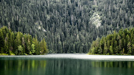 Beautiful view of Black lake and forest in Durmitor Park. Montenegro.