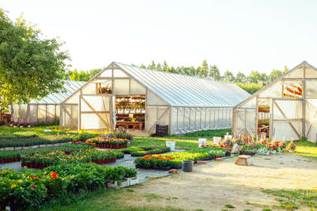 A potted flower nursery with wooden greenhouses and a flower market place in a rural area