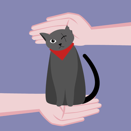 One-eyed cute cat is disabled. Caring for a cat. Hands around the cat. Vector flat cartoon illustration. On blue background.