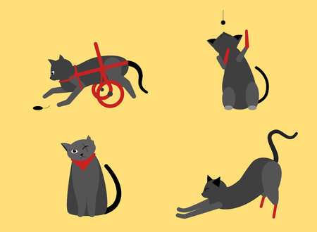 Collection of cute cats with disabilities. A bunch of happy pets or pets with artificial legs or artificial legs. Colorful vector illustration in flat cartoon style. On yellow background.