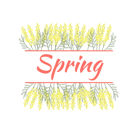 Spring and mimosa. Beautiful yellow spring flowers. White background Illustration
