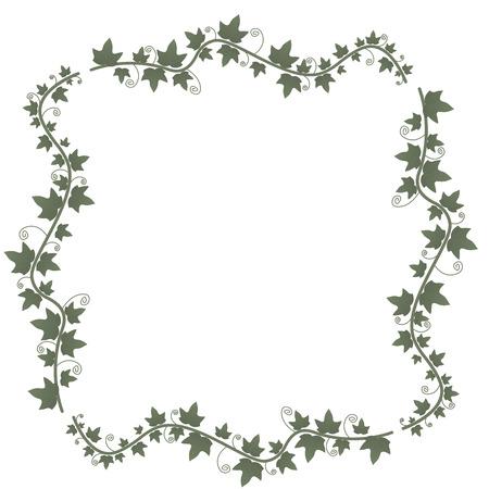 Efeureben mit grünen Blättern. Blumenvektorrahmen. Illustration grüne Pflanze, Zweig einer Rebe. Quadratische Form Vektorgrafik