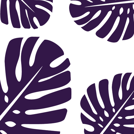The palm tropical leaves of the Monstera plant are purple in color. For background or cards. Several leaves and space for text.