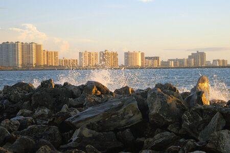 tampa bay: Tampa bay