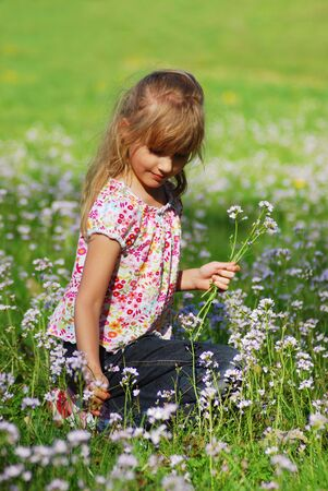 young girl on meadow  picking wild flowers