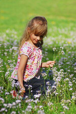 jeune fille sur le pré de fleurs sauvages de prélèvement