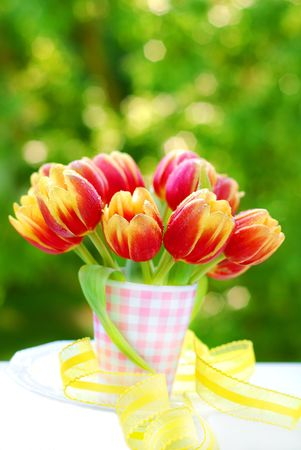 bunch of red-yellow tulips in the vase on green tree background photo